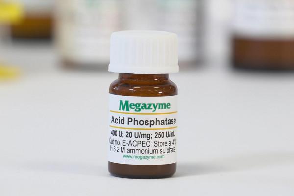 Phosphatase (Acid) (Escherichia coli)