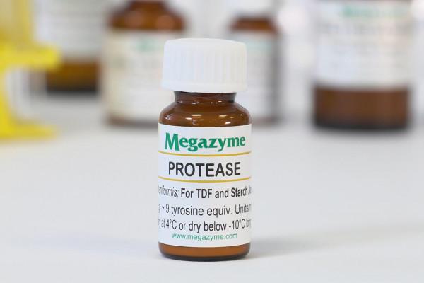 Protease Subtilisin A (from Bacillus licheniformis) Powder